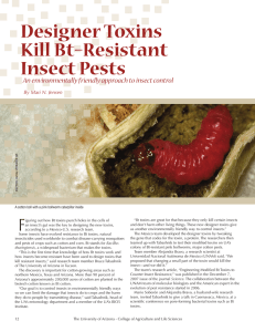 Designer Toxins Kill Bt–Resistant Insect Pests F