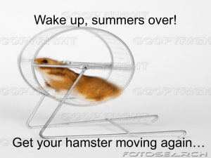 Wake up, summers over! Get your hamster moving again…