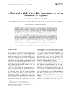 A Mathematical Model of an In Vitro Experiment to Investigate