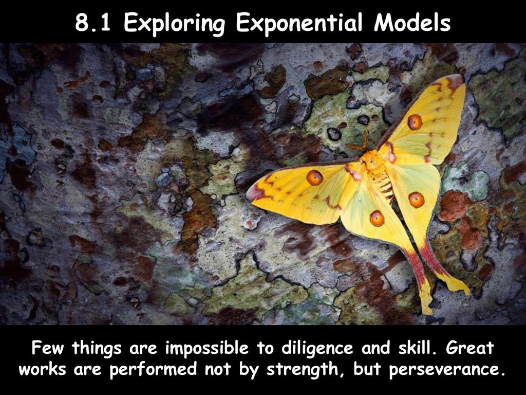 81 Exploring Exponential Models