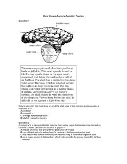 More Viruses-Bacteria-Evolution Practice  Question 1