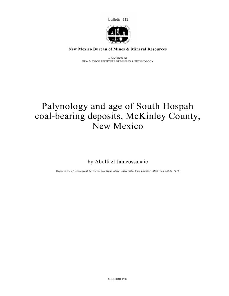 Palynology and age of South Hospah coal-bearing deposits, McKinley ...