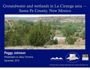 Groundwater and wetlands in La Cienega area — Peggy Johnson