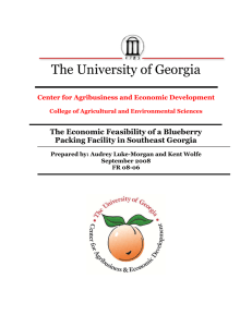 The University of Georgia The Economic Feasibility of a Blueberry