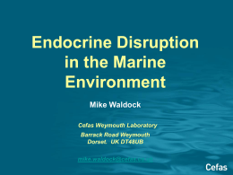 Endocrine Disruption in the Marine Environment Mike Waldock
