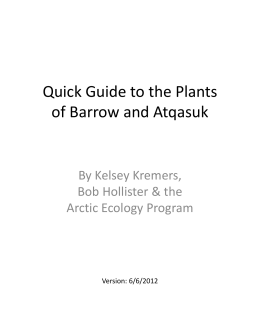 Quick Guide to the Plants  of Barrow and Atqasuk By Kelsey Kremers,  Bob Hollister & the