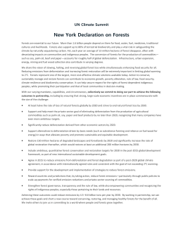 New York Declaration on Forests UN Climate Summit