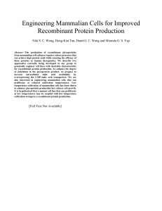 Engineering Mammalian Cells for Improved Recombinant Protein Production