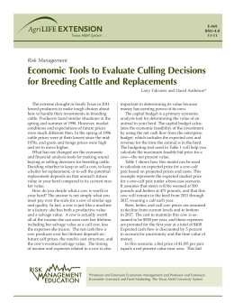 Economic Tools to Evaluate Culling Decisions for Breeding Cattle and Replacements