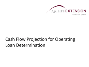 Cash Flow Projection for Operating Loan Determination