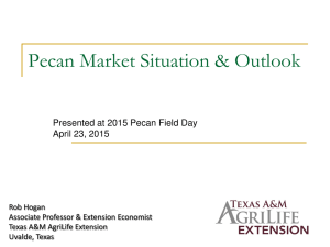 Pecan Market Situation & Outlook Presented at 2015 Pecan Field Day
