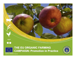 THE EU ORGANIC FARMING CAMPAIGN: Promotion in Practice