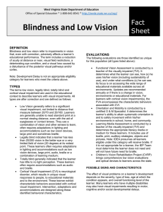 Blindness and Low Vision  Fact Sheet