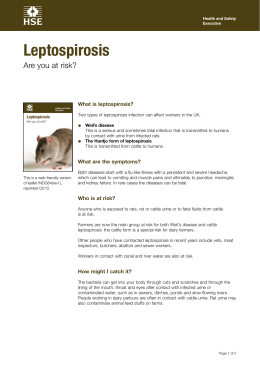 Leptospirosis Are you at risk? What is leptospirosis? ■