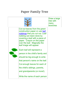Paper Family Tree