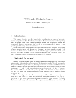 PDE Models of Molecular Motors 1 Introduction Summer 2014 NSERC USRA Report