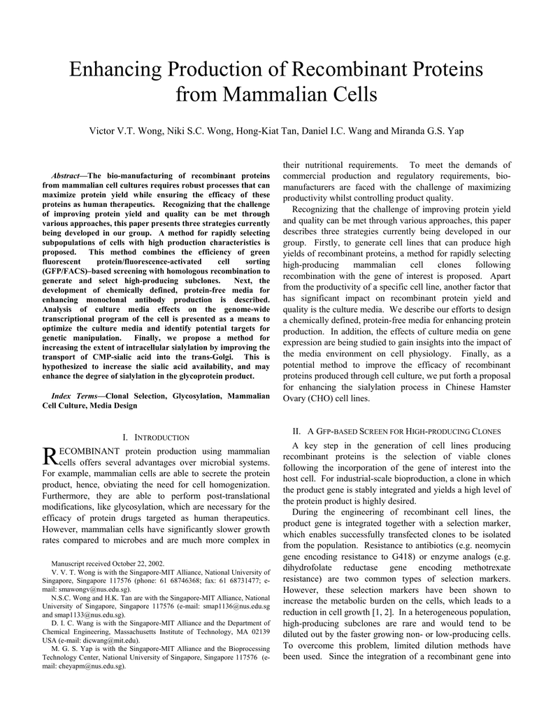 Enhancing Production of Recombinant Proteins from