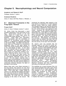 Chapter  5.  Neurophysiology  and  Neural  Computation 5.1 Electrical  Transients  in  the