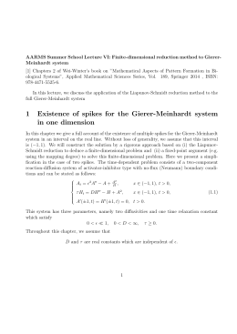 AARMS Summer School Lecture VI: Finite-dimensional reduction method to Gierer-