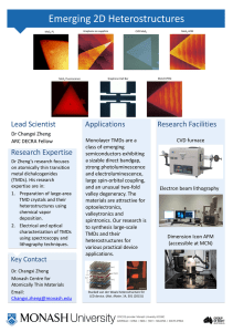 Emerging 2D Heterostructures Lead Scientist Applications Research Facilities