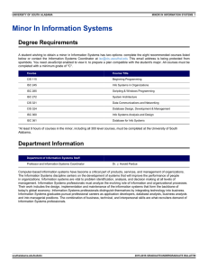 Minor In Information Systems Degree Requirements