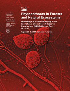 Phytophthoras in Forests and Natural Ecosystems