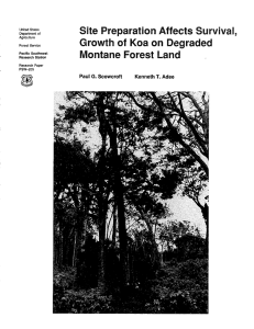 Site Preparation Affects Survival, Growth of  Koa on Degraded