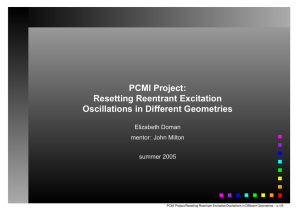 PCMI Project: Resetting Reentrant Excitation Oscillations in Different Geometries Elizabeth Doman