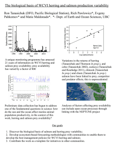 The biological basis of WCVI herring and salmon production variability