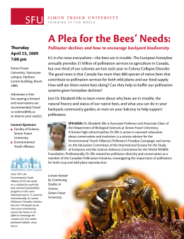 A Plea for the Bees' Needs: Thursday April 23, 2009