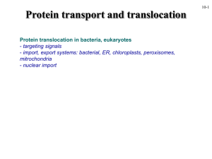 Protein transport and translocation Protein translocation in bacteria, eukaryotes targeting signals