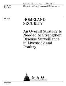 GAO HOMELAND SECURITY An Overall Strategy Is