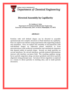 Directed Assembly by Capillarity