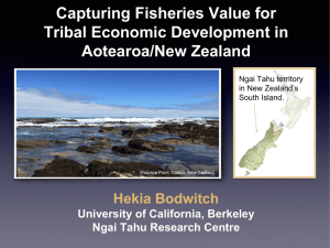 Capturing Fisheries Value for Tribal Economic Development in Aotearoa/New Zealand Hekia Bodwitch