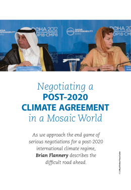 Negotiating a in a Mosaic World POST-2020 CLIMATE AGREEMENT