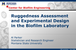 Ruggedness Assessment and Experimental Design in the Biofilm Laboratory Center for Biofilm Engineering