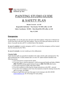 PAINTING STUDIO GUIDE & SAFETY PLAN