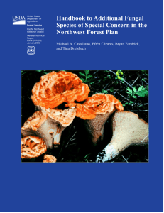 Handbook to Additional Fungal Species of Special Concern in the