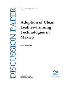 DISCUSSION PAPER Adoption of Clean Leather-Tanning