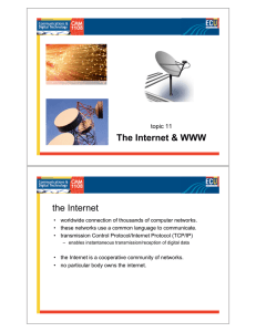 The Internet & WWW the Internet topic 11