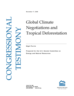 Global Climate Negotiations and Tropical Deforestation