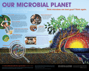 Our MicrObial Planet think microbes are bad guys? think again.