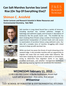 Shimon C. Anisfeld Can Salt Marshes Survive Sea Level  Rise (On Top Of Everything Else)?