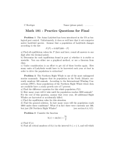 Math 181 - Practice Questions for Final