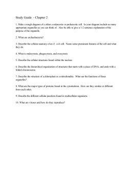 chapter 7 and 8 study guide Lesson 8-7 chapter 8 43 glencoe algebra 1 study guide and intervention solving ax2 + bx + c = 0 factor ax2 + bx + c to factor a trinomial of the form ax2 + bx + c .