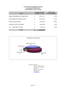 TEXAS TECH UNIVERSITY SYSTEM MANAGED INVESTMENTS YEAR ENDED November 30, 2007