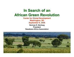 In Search of an African Green Revolution Center for Global Development Washington, DC