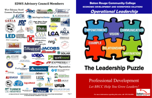 The Leadership Puzzle Professional Development Operational Leadership