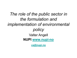 The role of the public sector in the formulation and policy