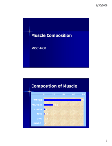 M scle Composition Muscle Composition Composition of Muscle